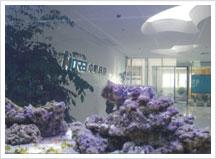 中明科技办公环境展示